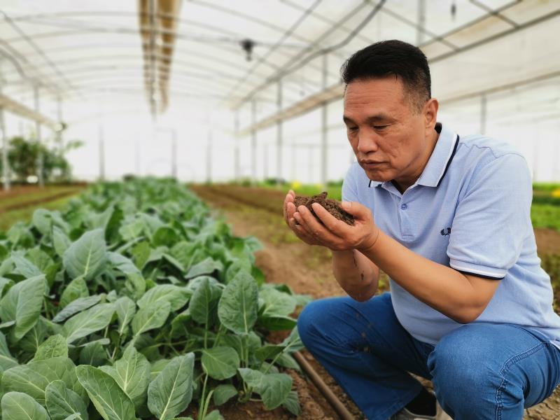 《农经》韩农:高效生态循环农业...