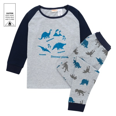 AW1931 Junior Boys Dinosaur Pyjama Set