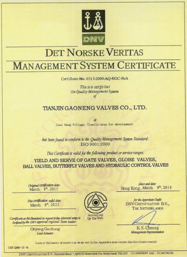 ISO9000英文版