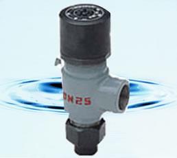 弹簧微启式外螺纹安全阀 A21F、A21H、A21W、A21Y