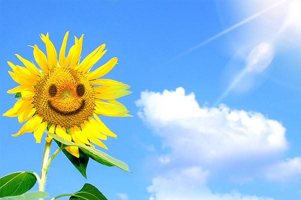 服务队伍温暖故事丨风雨过后,阳光再现