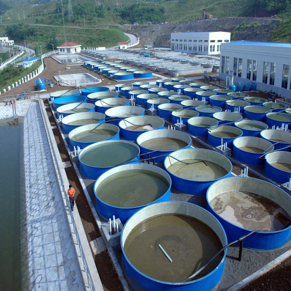 水电站增殖放流♂项目