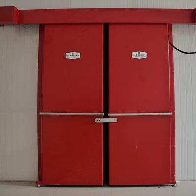DLM型电动冷库门