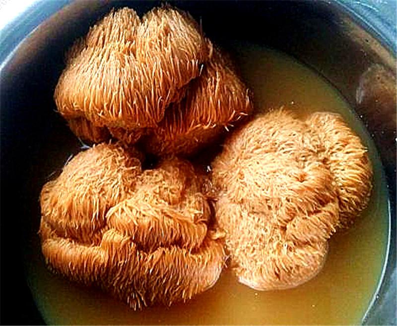猴头菇健脾八宝汤