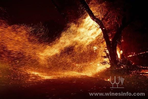 美国北加州葡萄酒乡再陷火海