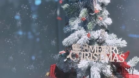 圣诞美食美酒欢乐颂