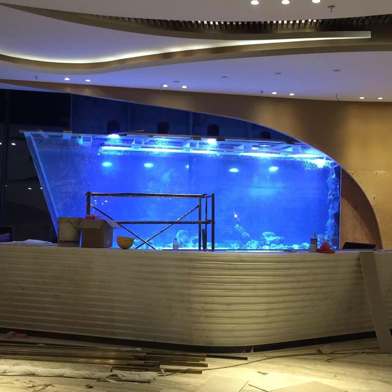 上市公司——中信国安集团大厅鱼缸...