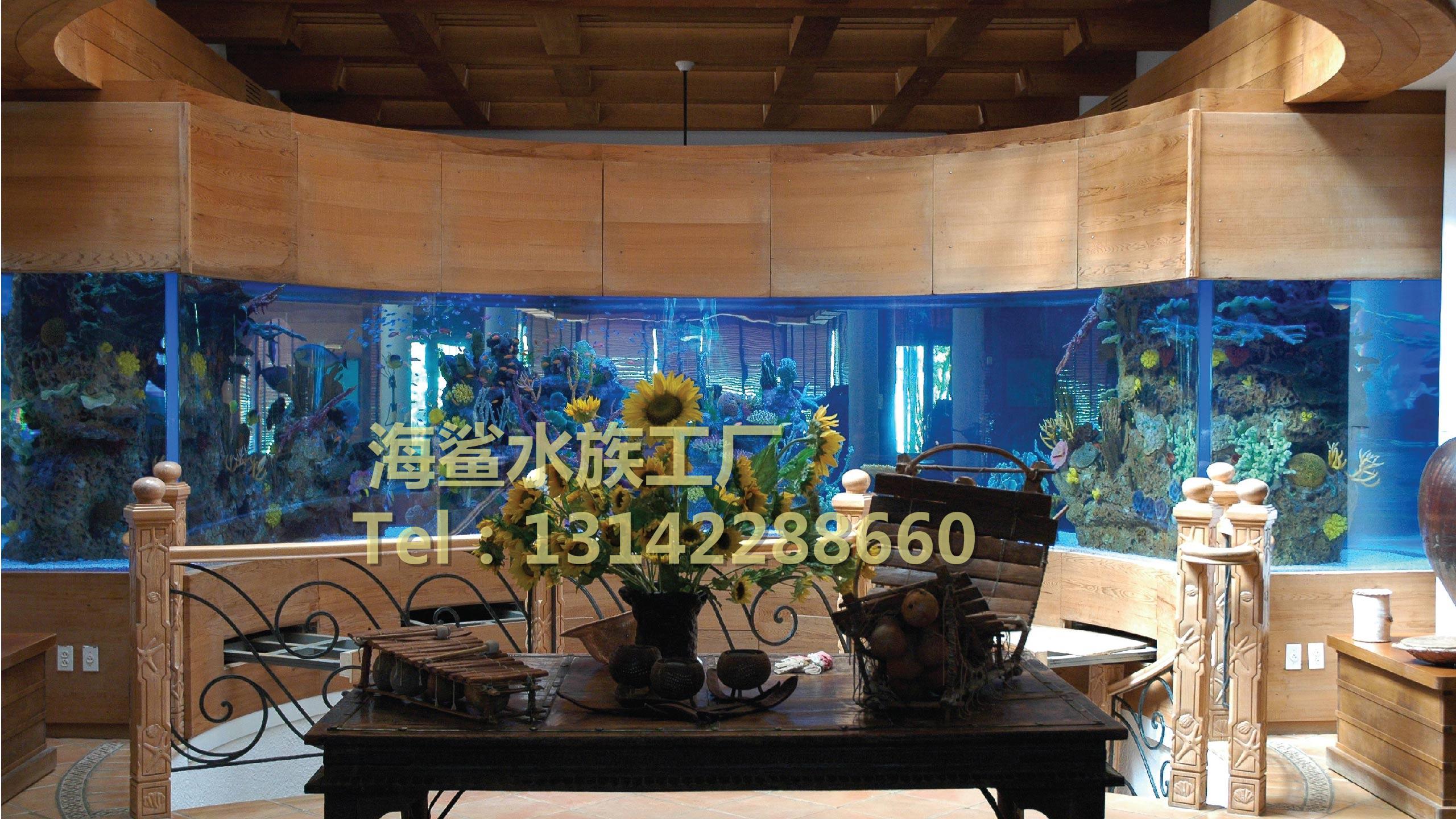 海鲨水族工厂介绍亚克力鱼缸中热带鱼的食性