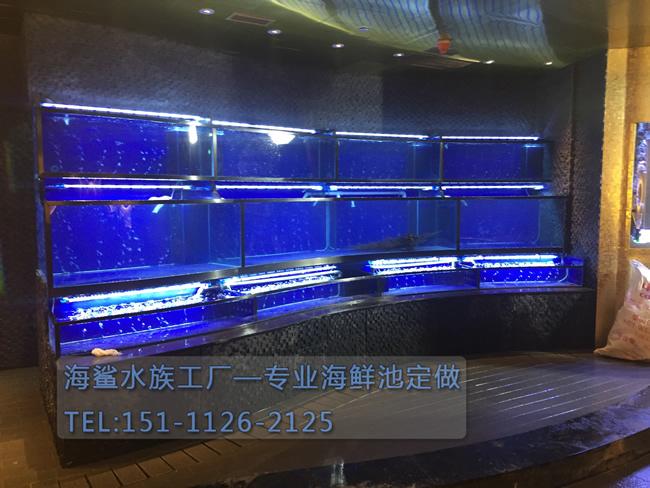 海鲨水族工厂介绍怎样安全地把鱼放到大型鱼缸工程中