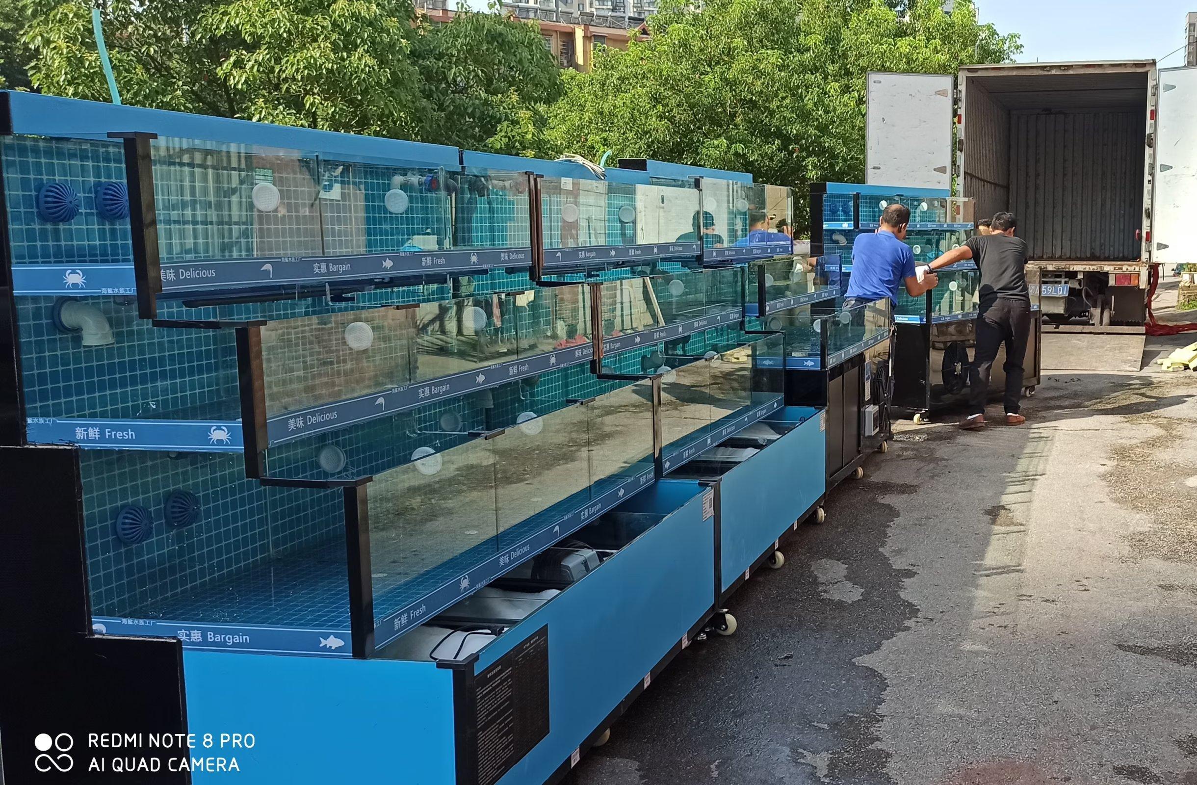 保养大型鱼缸的方法指导