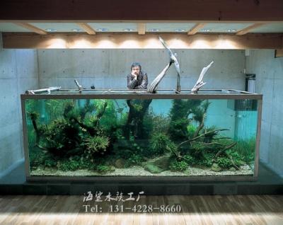 大型观赏鱼缸