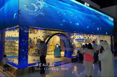 墙体观赏鱼缸