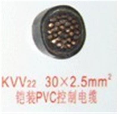 PVC控制电缆KVV22  30芯2.5