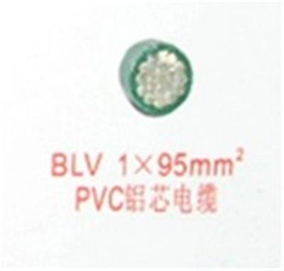 BLV  1X95