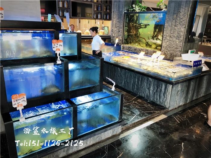 海鲜池常养水产的暂养技巧