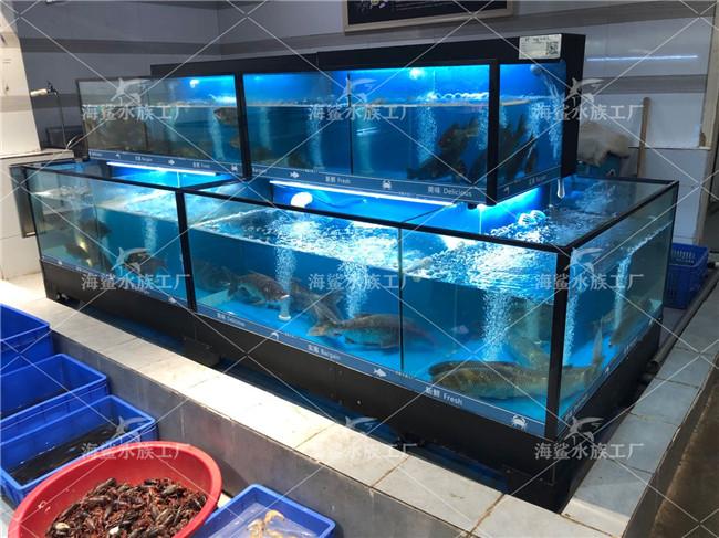 怎样给长沙海鲜鱼缸进货放鱼比较好