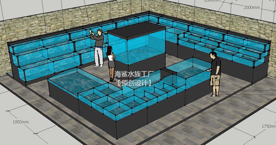 衡阳餐厅饭店海鲜鱼缸