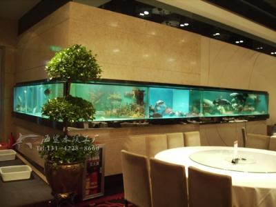 邵阳酒店海鲜池