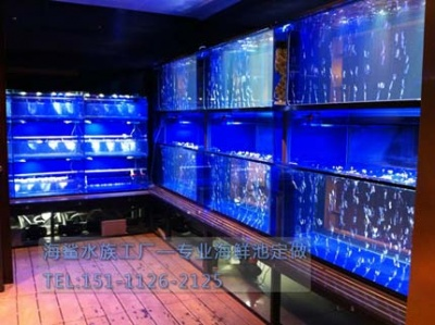 湘潭饭店餐厅海鲜鱼池 海鲨水族工厂制作