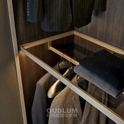 现代轻奢整体衣柜衣帽间LED金属框玻璃层板