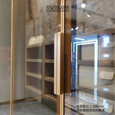 轻奢窄框玻璃门 JM-A7111 哑黑 哑金色