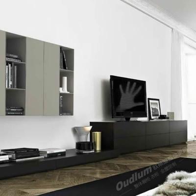 TV2001 客厅多功能组合电视柜 欧蒂隆.OUDLUM 全屋定制