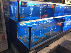邵阳饭店海鲜鱼池专业定做