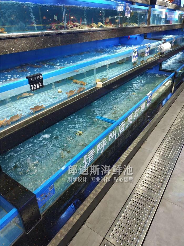 娄底定做移动式一体化海鲜鱼缸 专业厂家定制
