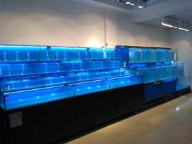 制作衡阳社区生鲜超市海鲜鱼池组厂家
