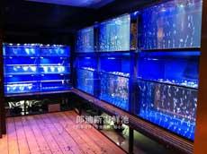饭店酒店定制海鲜鱼池鱼缸 长沙一手厂家