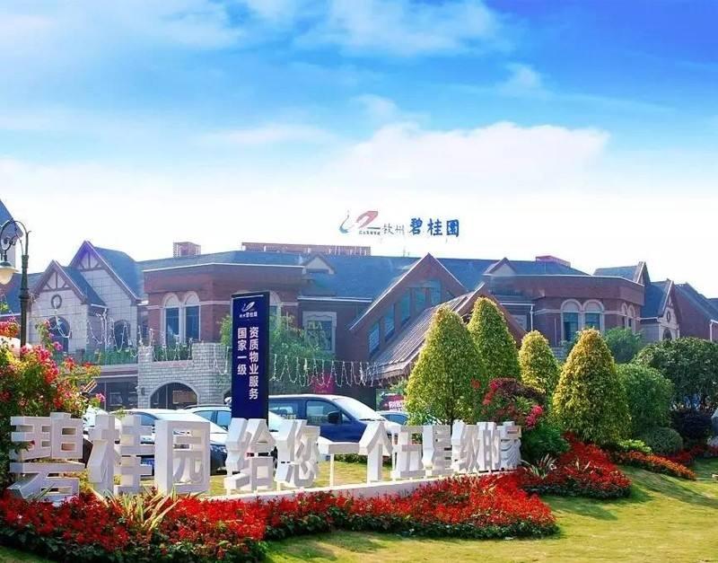 海南碧桂园