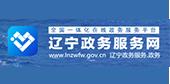 辽宁政务服务网