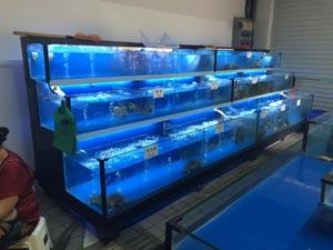 赣州生鲜市场海鲜池定做
