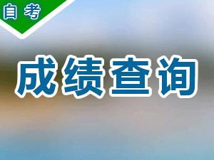 湖南省2020年10月自考成绩公...