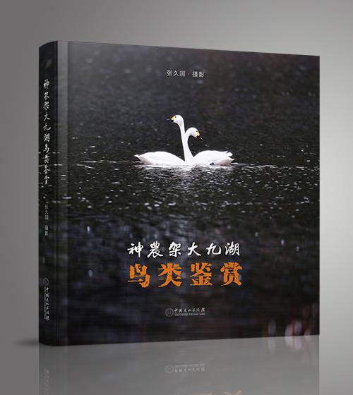 《神农架大九湖鸟类鉴赏》