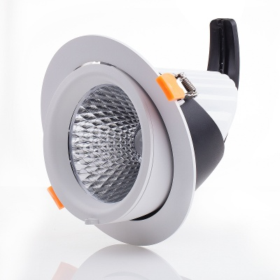 5'' Gimbal COB Downlight