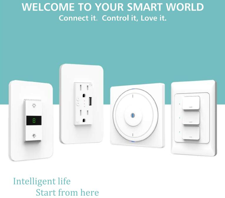 IoT Smart Switch/Outlet