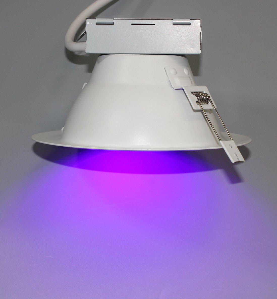 405nm Germicidal UVA Downlight