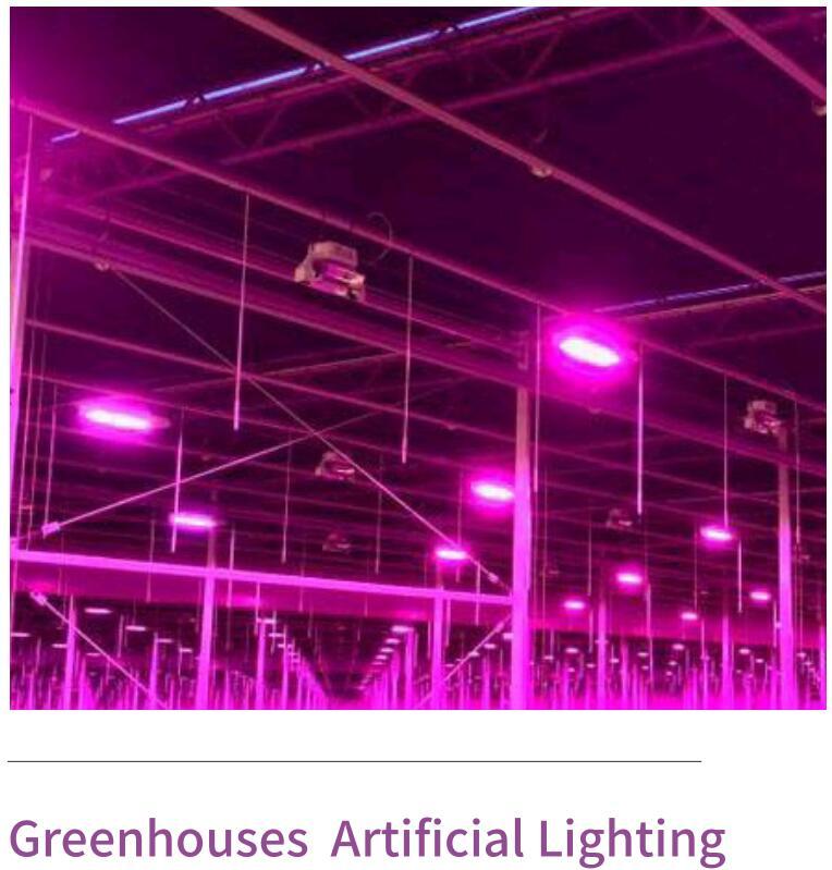 Greenhouse Smart Grow Light (LPT)