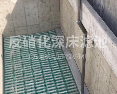 反硝化深床滤池  T型滤砖(山东潍坊富伦钢柱中水回用厂)