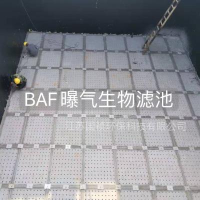 BAF曝气生物滤池(茂名市河西污水处理厂)