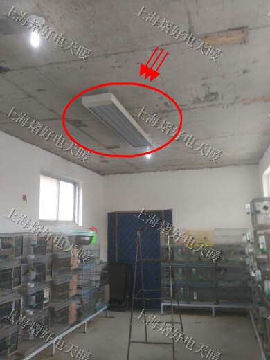 孵化室电取暖 远红外加热 辐射板 电暖器