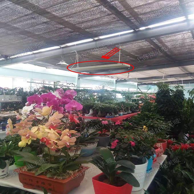花卉基地取暖-蓄热式远红外加热器