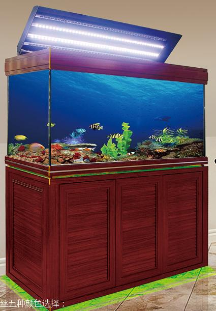 灯带款鱼缸