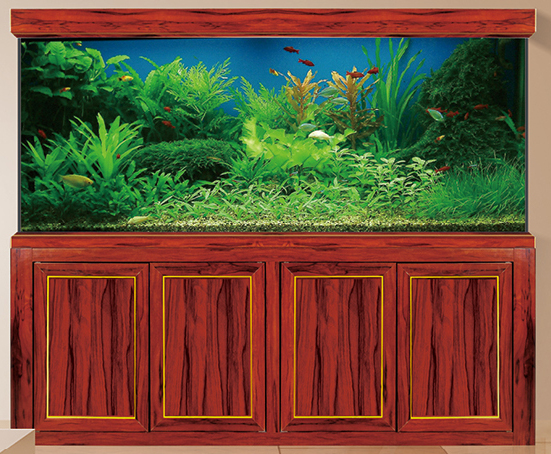 新木纹龙鱼缸
