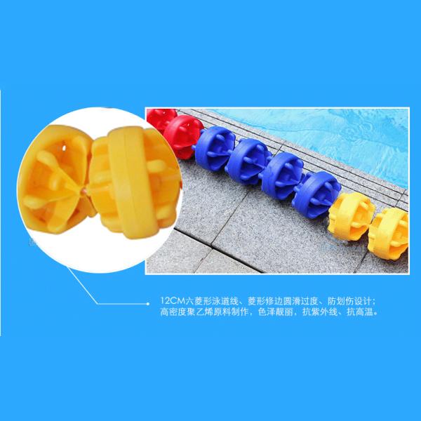 12泳道线
