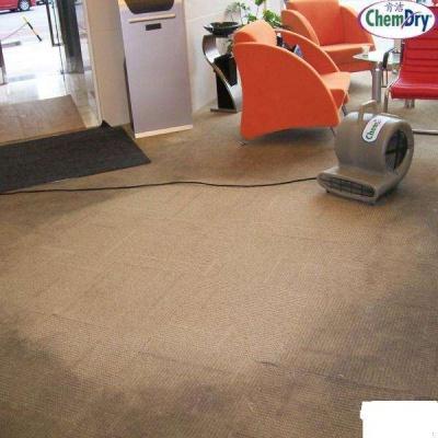 军威地毯清洗案例
