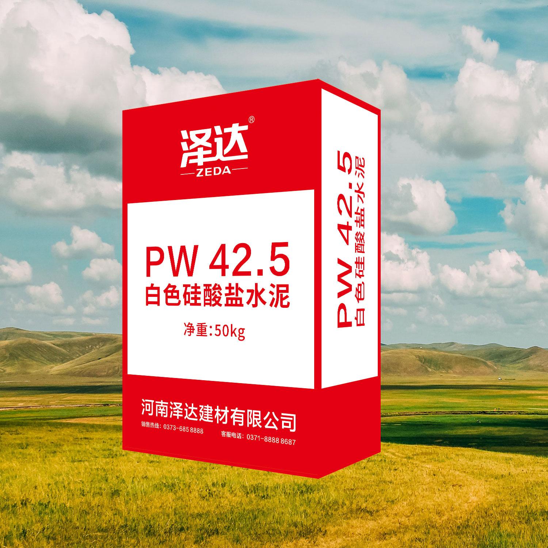 白色硅酸盐 PW42.5等级