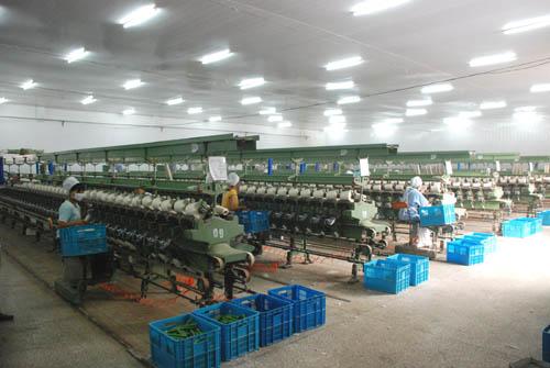 太康县万利源棉业有限公司倍捻车间钢结构工程