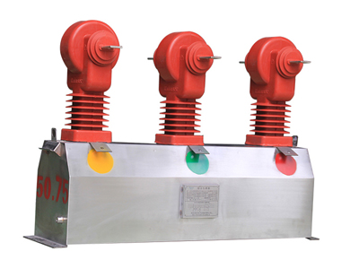 JLSZW1-10Ⅲ 不锈钢组合互感器